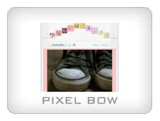 Pixel Bow - FLEX media viewer with annotation